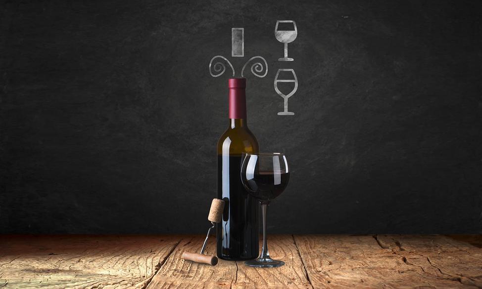 Caso Design WineSafe 66-Bottle Stainless 10725 Dual-Zone Wine Cellar